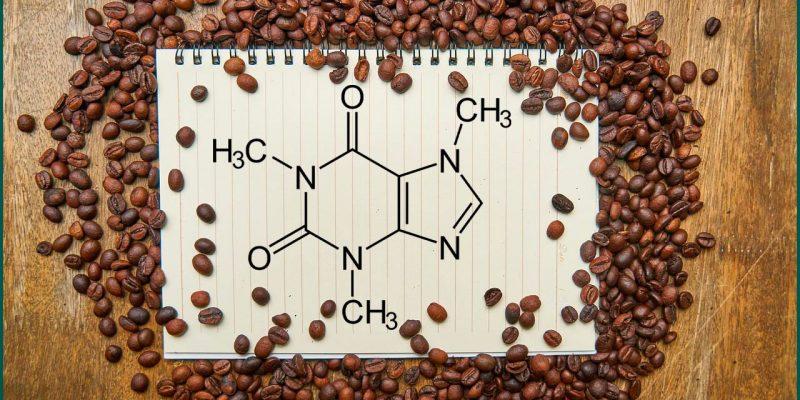 Кофе в зёрнах или растворимый, разбираемся что лучше