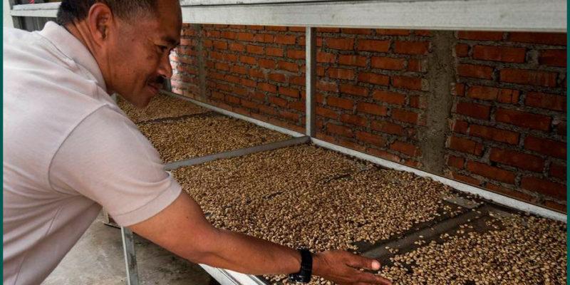 Купажи кофе: как создать идеальный вкус
